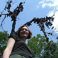Indiana Shoe Tree '06